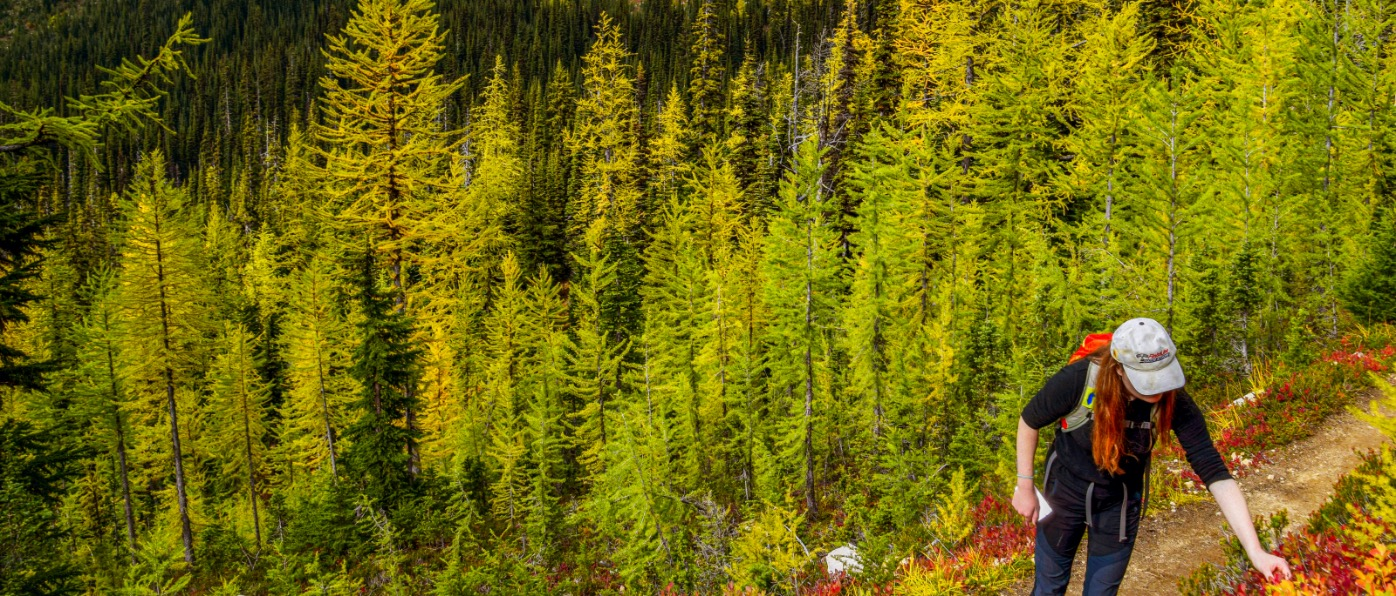Hiking North Cascades