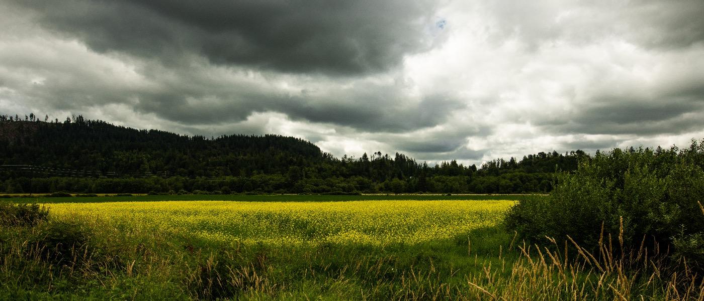 Highway 9 North Cascades