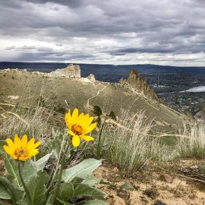 Wenatchee Valley Saddle Rock